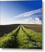 Field Path In Limagne. Auvergne. France. Europe Metal Print