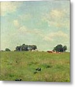 Field With Trees And Sky Metal Print