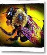 Fierce Bumblebee Metal Print