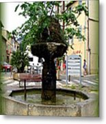 Fig Tree Fountain In Cassis Metal Print