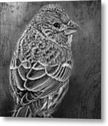 Finch Black And White Metal Print