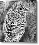 Finch Grungy Black And White Metal Print