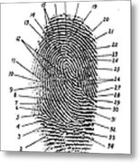 Fingerprint Diagram, 1940 Metal Print