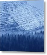 Fir And Spruce Tower Over The Forest Metal Print