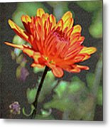 First Mum For Fall Metal Print by Sandi OReilly