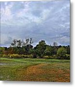First Rain Of Fall Metal Print