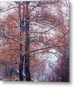 First Snow. Winter Coming Metal Print