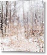 First Snow. Winter Mood Metal Print