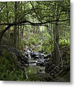 Fish Creek Metal Print