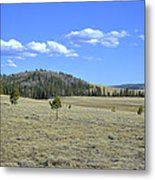Fish Creek Valley II Metal Print