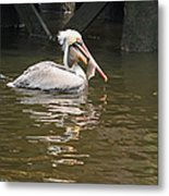 Fish Is Good For You Metal Print