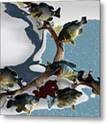 Fish Mount Set 05 B Metal Print