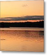 Fish Ring On The Lake Metal Print