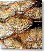 Fish Scales Metal Print by Odon Czintos