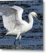 Fishing Dance Metal Print