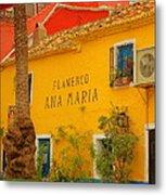 Flamenco Ana Maria Metal Print