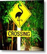 Flamingo Crossing Metal Print