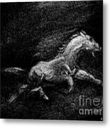 Flight Metal Print
