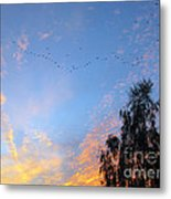 Flight Into The Sunset Metal Print