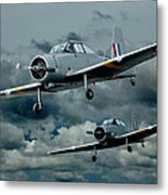 Flight Of The Winjeels Metal Print by Steven Agius