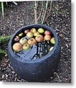 Floating Apples Metal Print