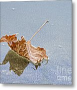 Floating Down Lifes Path 2 Metal Print