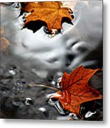 Floating Maple Leaves Metal Print