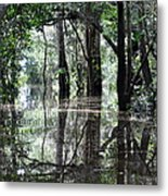 Flooded Amazon Rainforest Metal Print by Oliver J Davis Photography