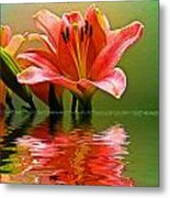 Flooded Lily Metal Print