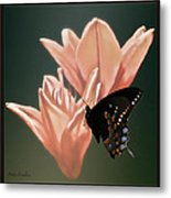 Floral Butterfly Dance Metal Print
