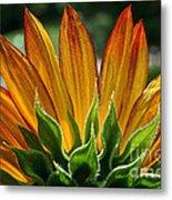 Floral Flaming Fingers Metal Print