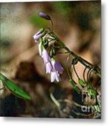 Floral Mantis Metal Print