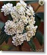 Floral on Display Metal Print