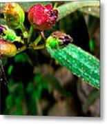 Floral Whispers Metal Print