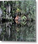 Florida Bayou Metal Print