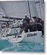 Florida Mid-winter Sailboat Racing Metal Print