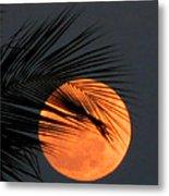 Florida Moonrise Metal Print