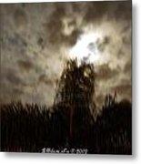 Florida Night Shadows  Metal Print