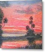 Florida River Scene Metal Print