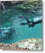 Florida Springs Cave Divers Metal Print