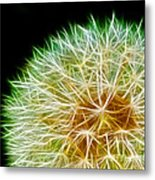 Flower - Forbidden Planet - Abstract Metal Print