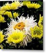 Flower 21 Metal Print