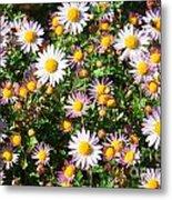 Flower Assault Metal Print