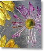 Flower Blossoms Under Ice Metal Print