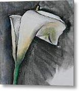 Flower In Bloom - Los Angeles Metal Print
