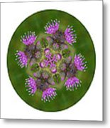 Flower Of Scotland Metal Print