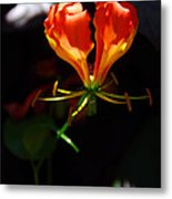 Flower Of The Heart Metal Print