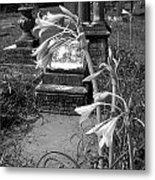 Flower Old Grave Metal Print