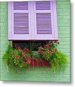 Flower Pot Window Metal Print
