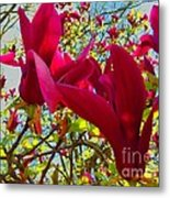 Flower-tree-the Tulip Tree Metal Print